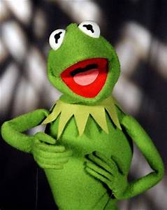 Kermit the Frog - Muppet Wiki