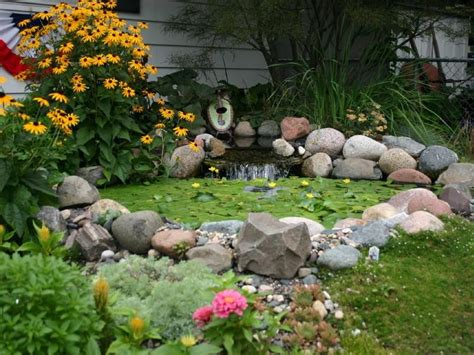 Creative And Minimalist Pond Designs
