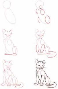 how to draw cats how do you draw a cat and cats gallery