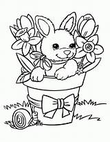 Coloring Cute Bunny Pages Baby Printable Popular sketch template