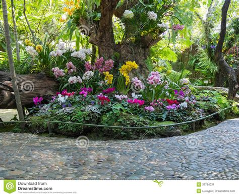 Beautiful Backyard Garden Park Scene Stock Image