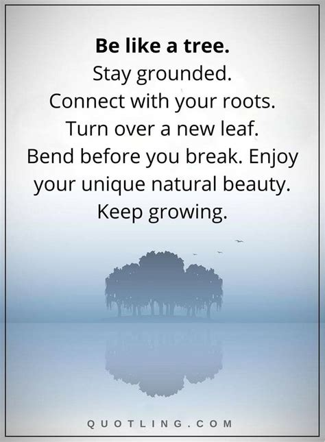 Stay True To Your Roots Quotes