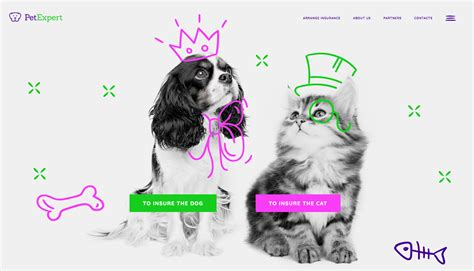 Want the best pet insurance? Introducing The All-New Pet Insurance Provider