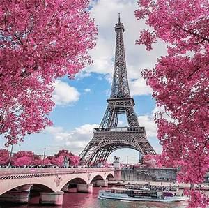 Crmla, Paris, Douglas, Tumblr