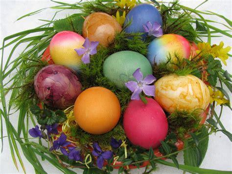bild  aus beitrag wer bringt die eier osterfuchs oder
