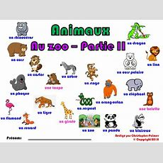Primary French Animals  Part Ii At The Zoo (key Stage 1 And Key Stage 2) By Kris240680