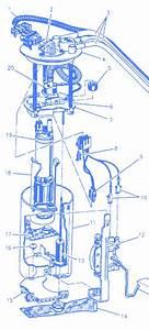 Oldsmobile Alero V6 2003 Fuel Pump Assembly Electrical Circuit Wiring Diagram  U00bb Carfusebox