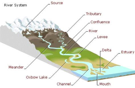Parts Of River Diagram