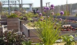 Potager Hors Sol : cr ation d 39 un jardin potager hors sol ekodev blog ekodev ~ Premium-room.com Idées de Décoration