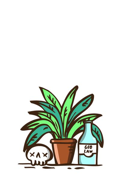motivation chill plants gif find  gifer