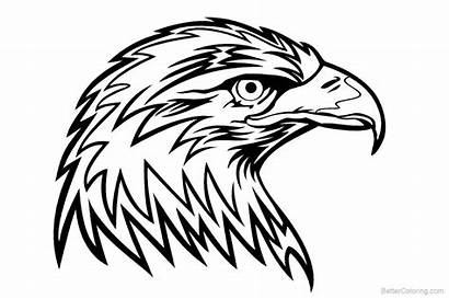 Eagle Coloring Pages Head Printable Adults