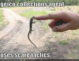 geico funny commercials quotes quotesgram