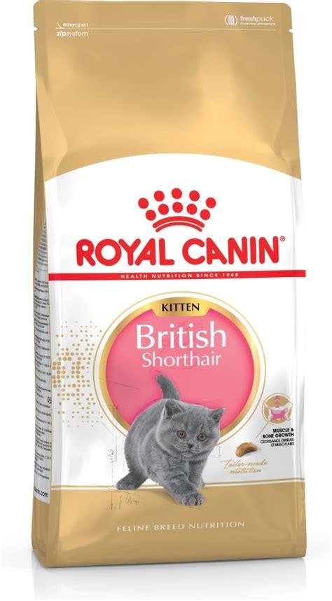 royal canin kitten shorthair shorthair kitten food royal canin 174