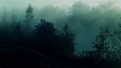 Aesthetic Dark Forest Wallpapers Nighttime During 1366