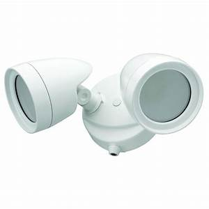 Defiant head white outdoor integrated led security