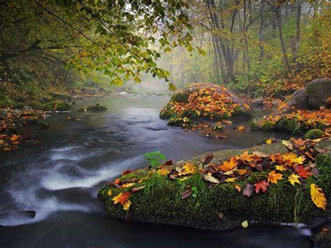 Autumn Landscape Photo, Nature Wallpaper National
