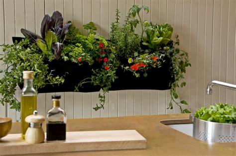 Indoor Plant Décor Inspires With Houseplants