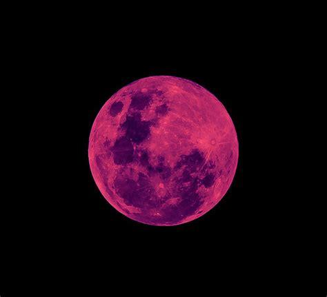 pink moon weneedfun
