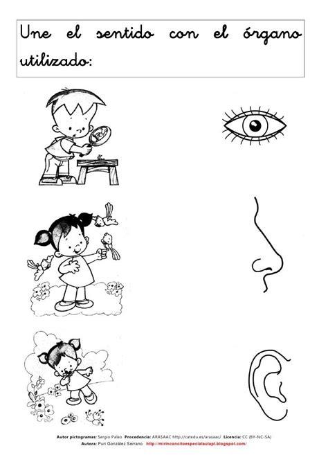 los sentidos  atividades matematica educacao infantil