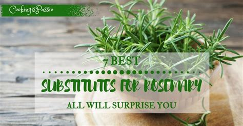 rosemary substitute 7 best substitutes for rosemary all will surprise you 2017 edition
