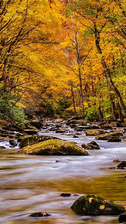 Nature Mobile Phones Autumn Forest Wallpapers Mountain
