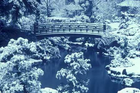 winter light japanese garden portland oregon