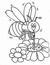Coloring Honey Pages Bumblebee Bee Beehive Honeycomb Straw Sucking Using Bumble Bumblebees Drawing Getcolorings Printable sketch template