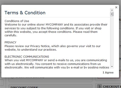 Online Store Terms And Conditions Template South Africa
