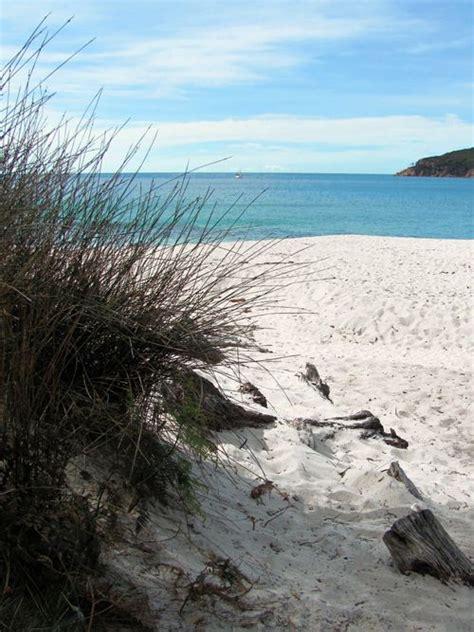 ocean view   hammock dental care tips tricks   beach ocean beach beautiful
