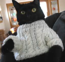 sweaters for cats cat sweater meme post knitgrrl