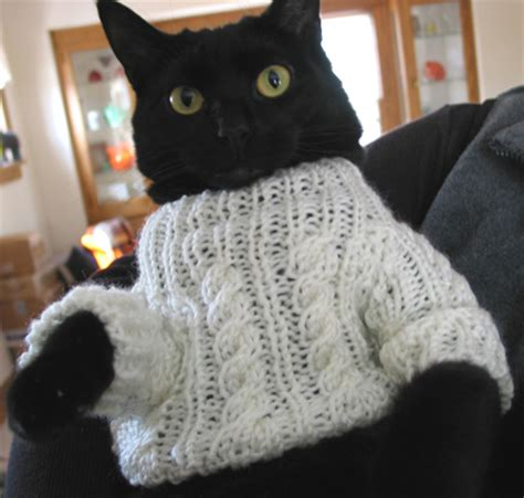 cat sweaters for cats knitting patterns cat sweaters 1000 free patterns