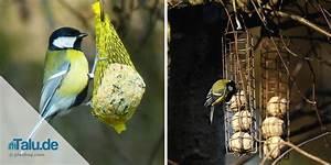 Meisenknödel Selber Machen Welches Fett : meisenkn del vogelfutter selber machen ideen und rezepte ~ Frokenaadalensverden.com Haus und Dekorationen