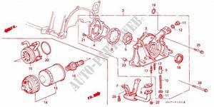 Honda Civic 16 Vtec Engine Oil