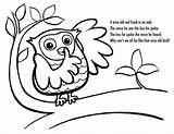 Owl Coloring Owls Printable Printables sketch template