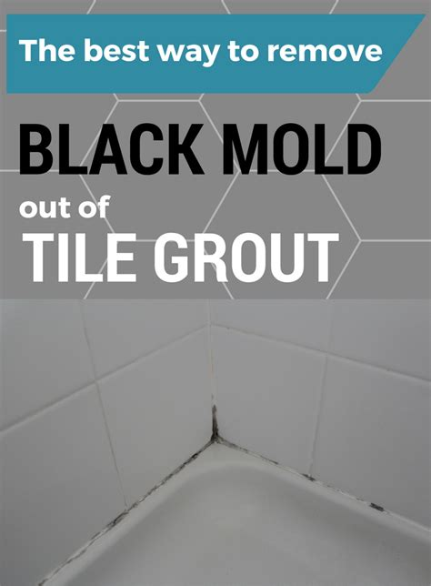 remove black mold   tile grout