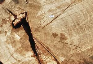 Holz Awesome Holz With Holz Awesome Helles Holz Knstlich