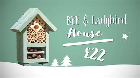 11th day of christmas gifts bee ladybird house youtube