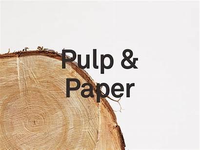 Raw Materials Material Dribbble Sami Types Few