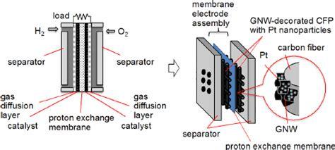 schematic   test single proton exchange membrane pem fuel cell  scientific
