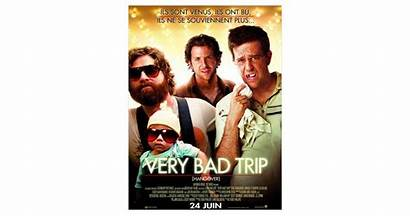 Bad Very Trip Purebreak