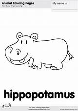 Coloring Hippopotamus Pages Simple Animal Super Tail Room Worksheets Farm Resource Learning Wag Animals Activities Preschool Songs Supersimplelearning Kindergarten Supersimple sketch template