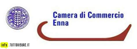 camera  commercio  enna