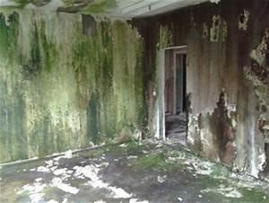 Nasse Wände Im Haus : feuchte w nde sanieren nasse w nde trocknen in berlin ~ Lizthompson.info Haus und Dekorationen