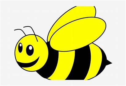 Bee Bumble Cartoon Clipart Background Bees Clip