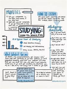 Best 20  Study Guides Ideas On Pinterest