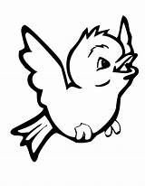 Bird Coloring Pages Birds Birdie Learning Fly sketch template