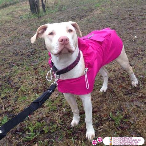 billige regenmantel fuer grosse hunde  rosa