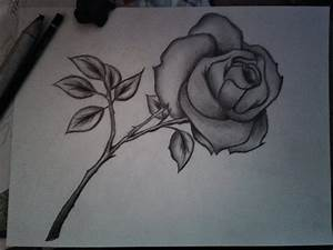 Pencil Drawings Of Flowers With Pictures | Bouquet Idea