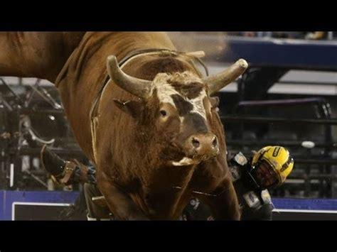 bushwacker pbrs  bucking bull   consecutive
