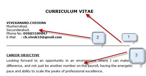 What Is Meant By Career Objective by Sle Career Objective Statements Cv Buy A Essay For